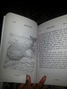 Moby Dick illustrated.