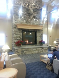 The fireplace at the South Bowie library. Cozy.