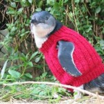 Knitted-jumper-penguin